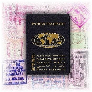 Паспорт гражданина мира: как получить в России и что он дает